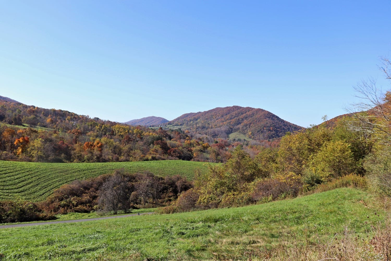 Nature Conservancy lands